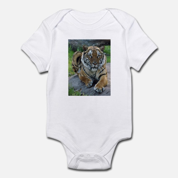 Tiger 4 Infant Creeper
