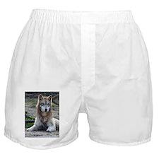 Grey Wolf 2 Boxer Shorts