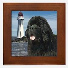 Newfoundland dog and Lighthou Framed Tile