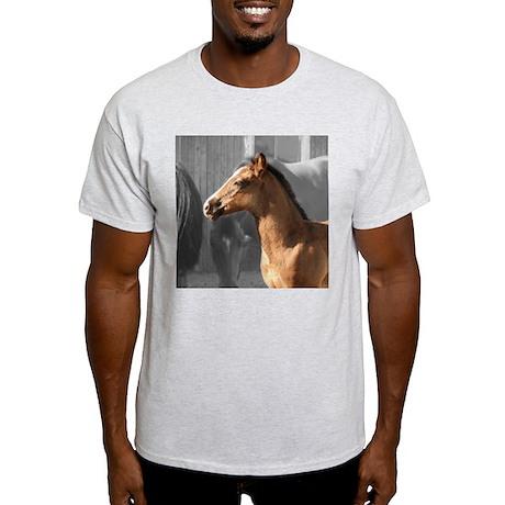 DAKOTA Ash Grey T-Shirt