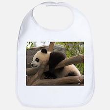 Baby Giant Panda Bib