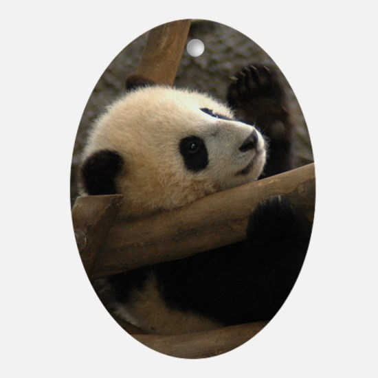Baby Panda Oval Ornament