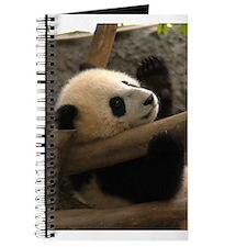 Baby Panda Journal