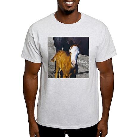 HARPO Ash Grey T-Shirt