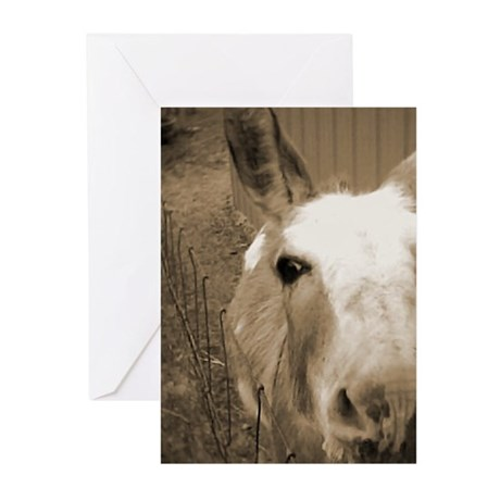 CUTEST DONKEY Greeting Cards (Pk of 10)