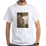 CUTEST DONKEY White T-Shirt