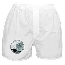 New Hampshire Quarter Boxer Shorts