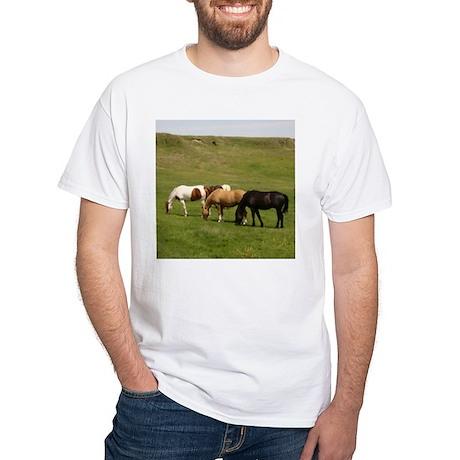 GRAZING White T-Shirt