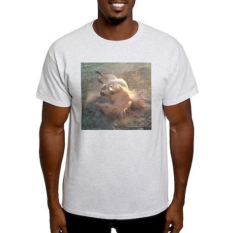 ROLLING Ash Grey T-Shirt