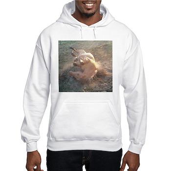 ROLLING Hooded Sweatshirt