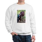 GIRL & HORSE Sweatshirt