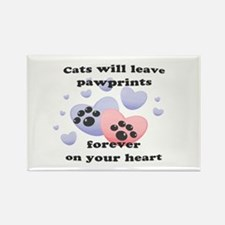 Kitty Paw-Prints Rectangle Magnet