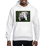 Tiger In The Water Hooded Sweatshirt