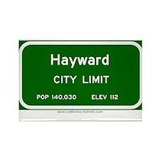 Hayward Rectangle Magnet