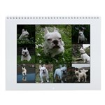 The Life of a French Bulldog Callendar