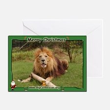 African Lion 006 Greeting Card
