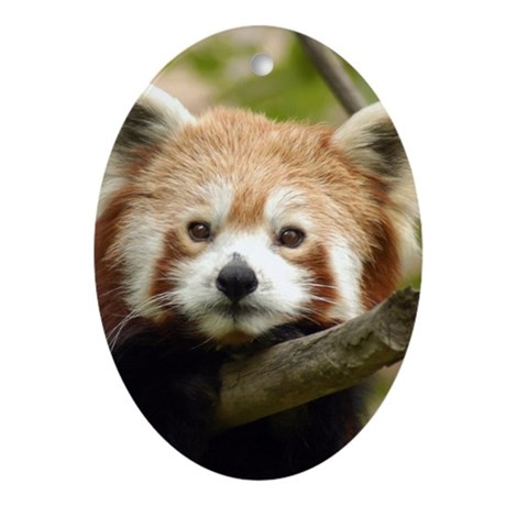 Red Panda Oval Ornament