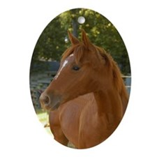 Ornaments Oval Horse