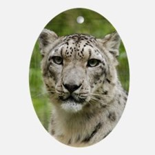 Oval Ornament Snow Leopard