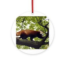 Red Panda Ornament (Round)