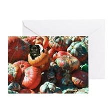 Daisy in Pumpkin Patch Greeting Card
