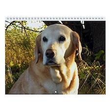 Labrador Retriever Wall Calendar - Labrador Fun