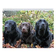 Labrador Retriever Wall Calendar - Dark Chocolate