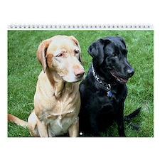 Labrador Retriever Wall Calendar - Best Friends