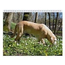 Labrador Retriever Wall Calendar - Joyful Labs