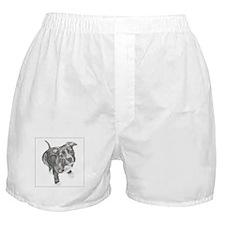 Grey Tile Pitbull Boxer Shorts