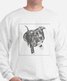 Grey Tile Pitbull Sweatshirt