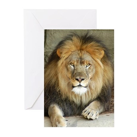 African Lion 3 Greeting Cards (Pk of 10)