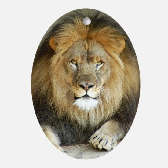 African Lion 3 Oval Ornament