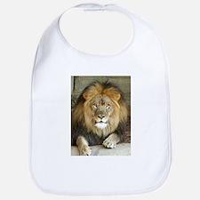 African Lion 3 Bib