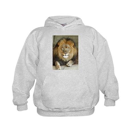 African Lion 3 Kids Hoodie