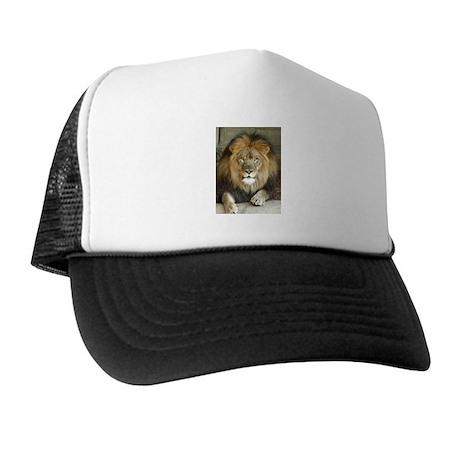 African Lion 3 Trucker Hat