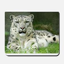 Snow Leopard 3 Mousepad