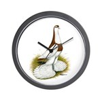 Australian Saddleback Pigeon Wall Clock