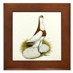 Australian Saddleback Pigeon Framed Tile