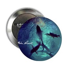 "Circle Of Fishes 2.25"" Button"