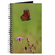 Cute Butterflie Journal