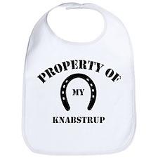My Knabstrup Bib