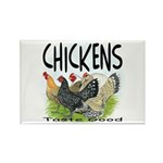 Chickens Taste Good! Rectangle Magnet (10 pack)