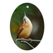 Carolina Wren Oval Ornament (oval)