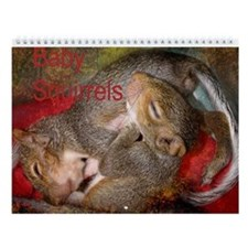 Funny Squirrel Wall Calendar