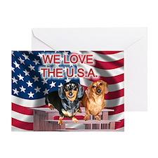 Love USA Greeting Card