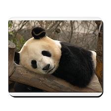 Ginat Panda 2 Mousepad