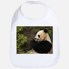 Giant Panda 4 Bib