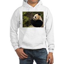 Giant Panda 4 Hoodie