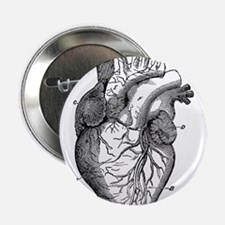 "Cute Heart 2.25"" Button"